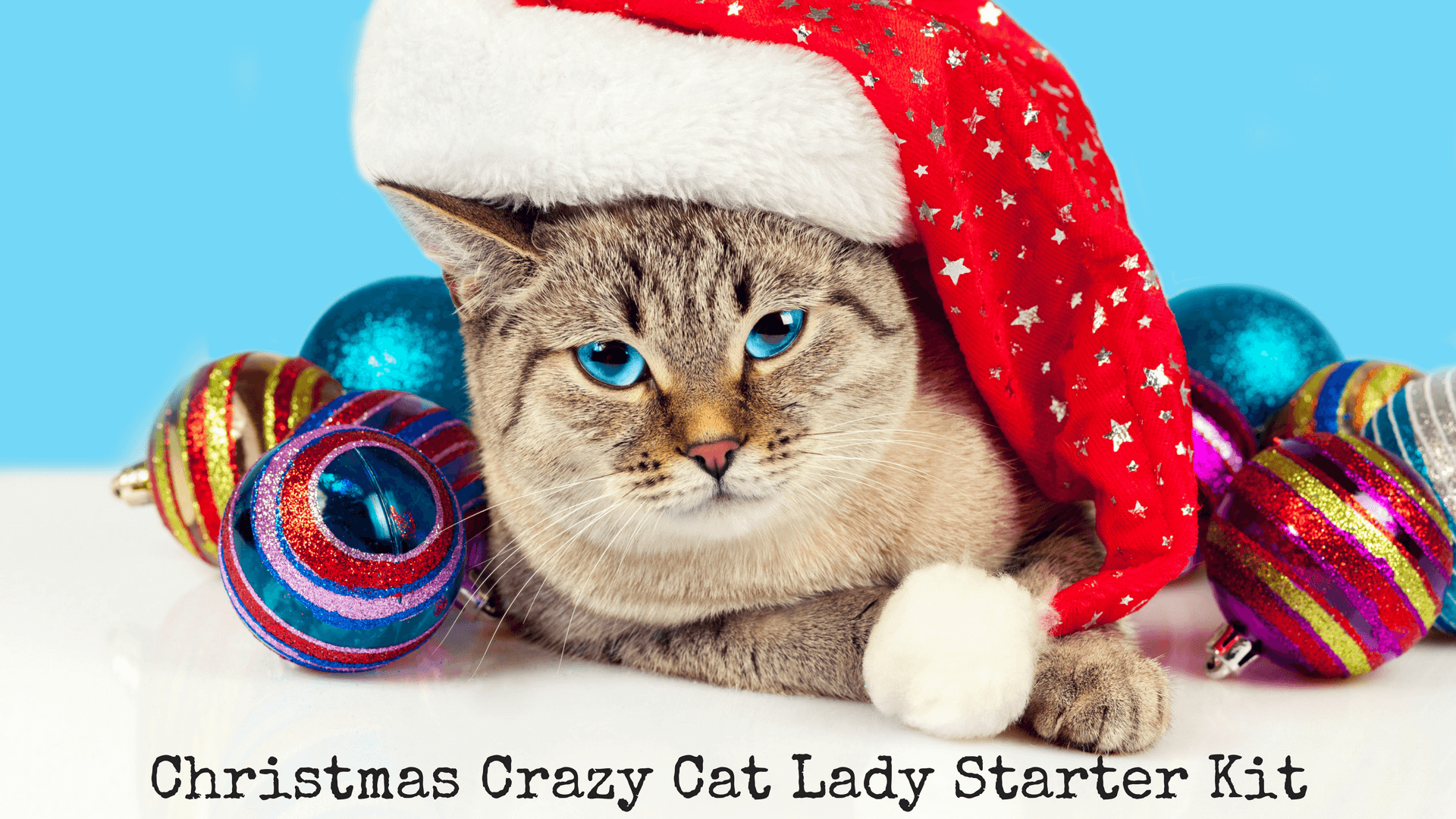 Christmas Crazy Cat Lady Starter Kit