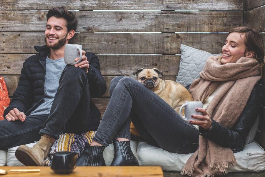 Dating Profile Dog