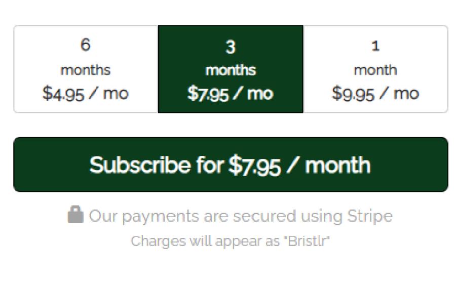 Bristlr Price
